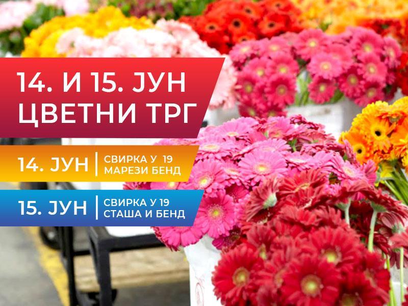 cvetni trg vrbas